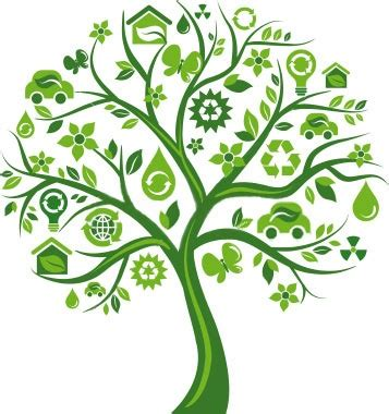 Role of Ngo in Environmental Management Essay - 1768 Words